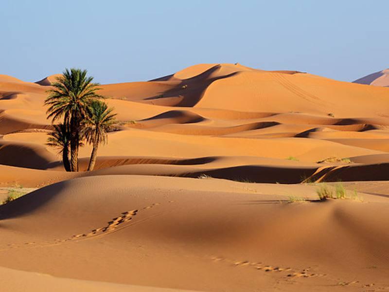 أزمة المناخ تهدد بتوجيه ضربة قاسية لبلدان الشرق الأوسط الغنية بالنفط وفق خبراء